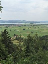 """German Green"" ~ view from Neuschwanstein"