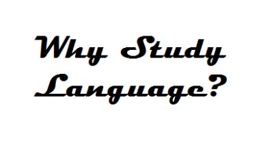 Why study language